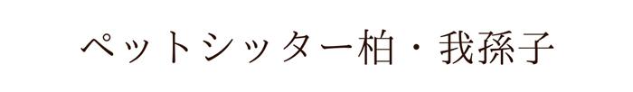 ペットシッター柏・我孫子【お散歩代行・留守中のペットのお世話】